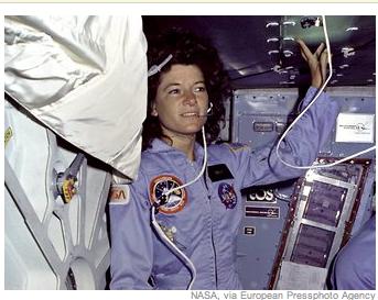 Sally Ride's NASA patch; xref: 'Big Wig's service K-9 vest patches - Screen Shot 2012-07-23 at 4.18.08 PM